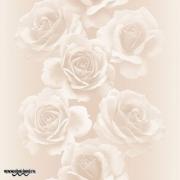Обои Andrea Rossi Domino 54125-3