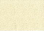 Обои виниловые на бумаге 40635 Elysium 0.53 см