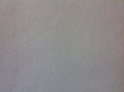 Обои виниловые на флизилине 1580035-38 Max Wall