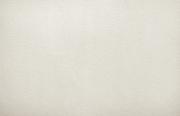 Обои виниловые на бумаге 97000 Elysium 0.53 см