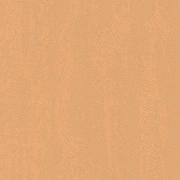 Обои виниловые на флизилине 3569-4 Erismann