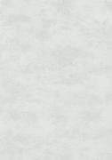 Обои виниловые на флизилине 2905-3 Erismann