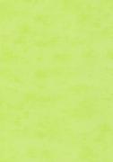 Обои виниловые на флизилине 2905-13 Erismann