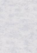 Обои виниловые на флизилине 2905-6 Erismann