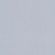 Обои виниловые на флизилине 445251 Rasch 0.53см