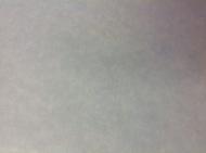 Обои бумажные 798029 Rasch 0.53см